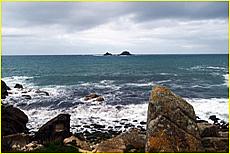 Progo Beach