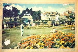 falmouth-gardens-photo